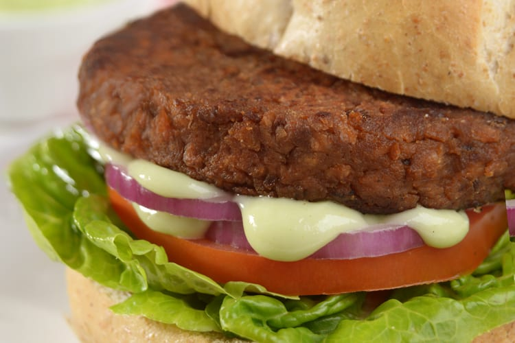 Hamburguer-vegetariano-com-maionese-wasabi Receitas